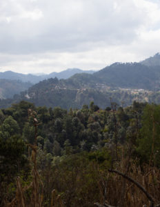 The view of the Guatemalan hillside from Yolanda's home. Like many Friendship Bridge clients, she lives in a very isolated, rural area.